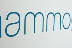 Mammographie